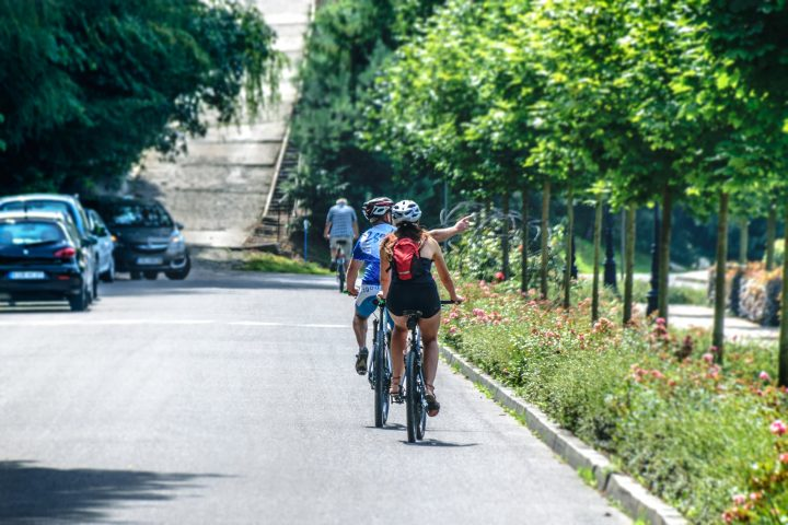 people cycling on road nearby cars with trees surrounding
