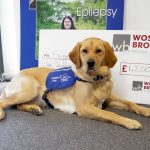 Support Dogs with £1200 donation from Wosskow Brown